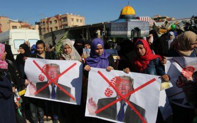 Le militantisme pour la Palestine doit créer des espaces pour les récits palestiniens