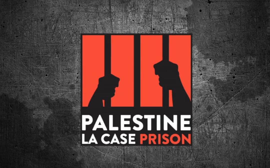 Bobine palestinienne #2